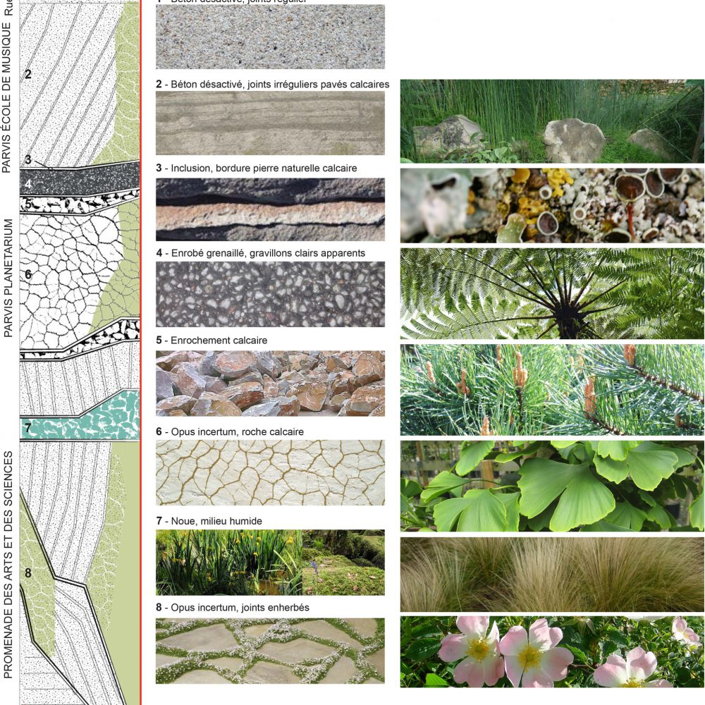pont de claix-planetarium-matériaux sols et végétaux