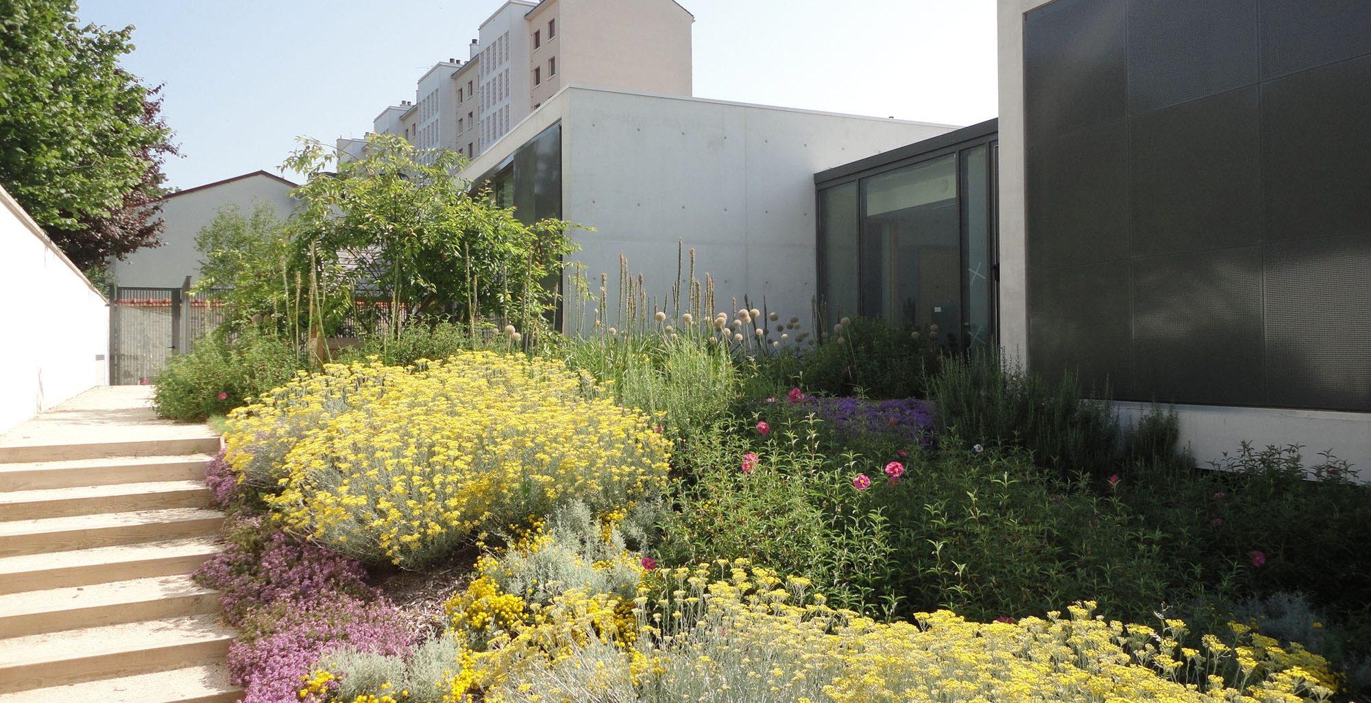 Jardin de découvertes avec des plantes à toucher, sentir, goûter pour développer les sens des petits
