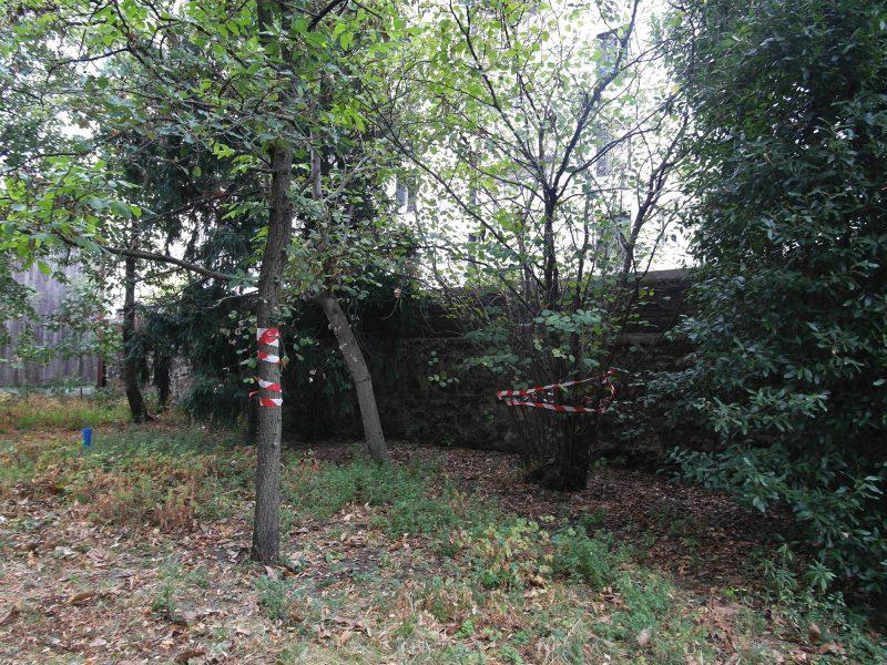 terrasses-gennevilliers-chantier-repérage-arbres