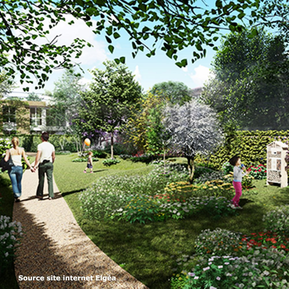 terrasses gennevilliers-jardin permaculture