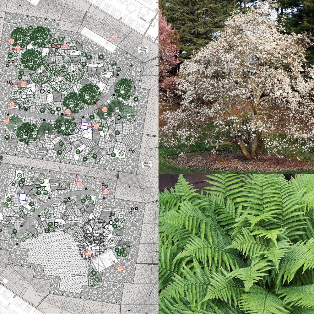 Touzet-Saint-Ouen-palette-végétale-jardin