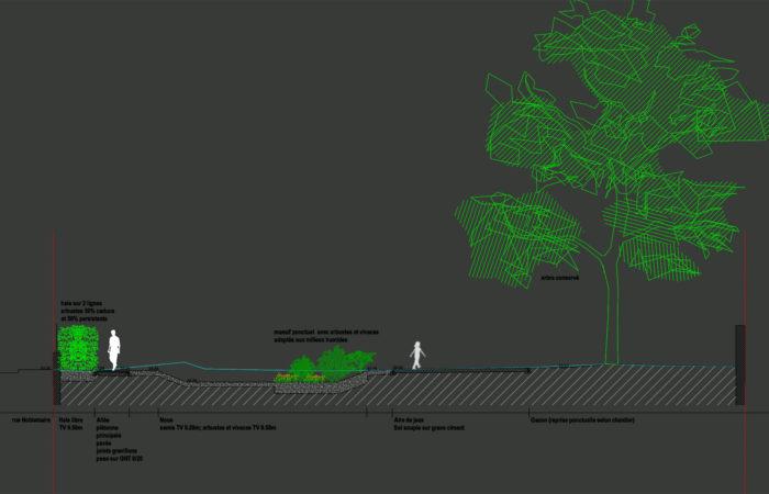 Noue et jardin de pluie pour gestion des eaux à la parcelle